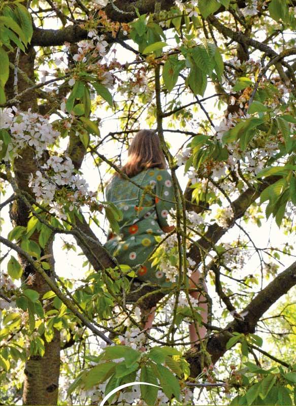 maedchen-im-kirschbaum